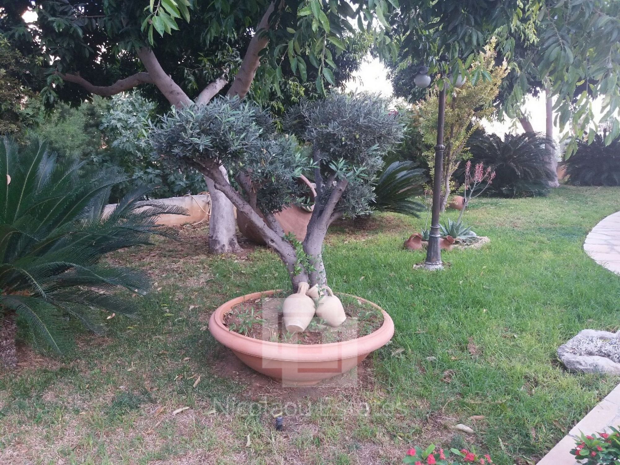 Garden Imagery in 'Hamlet'